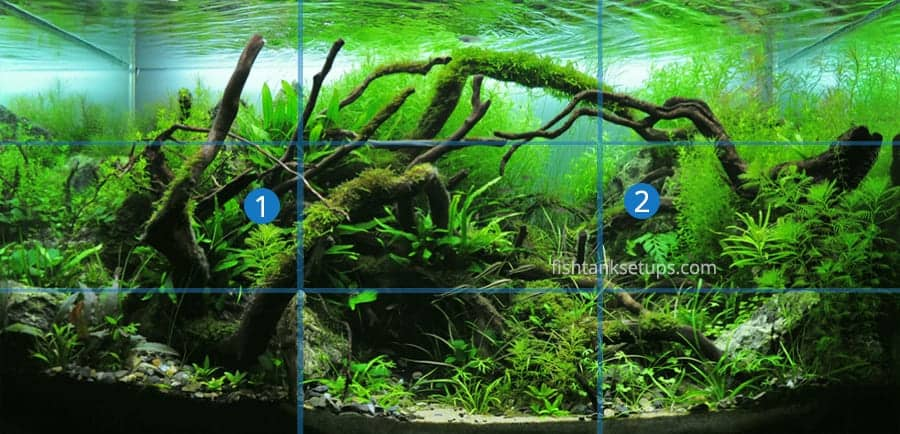 aquascaping-rule-of-thirds