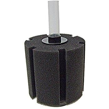 sponge-filter