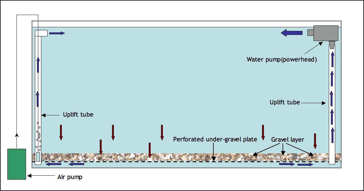 undergravel-filter
