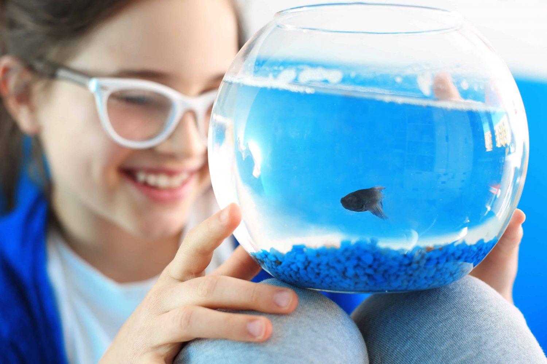 best-starter-aquariums-for-children