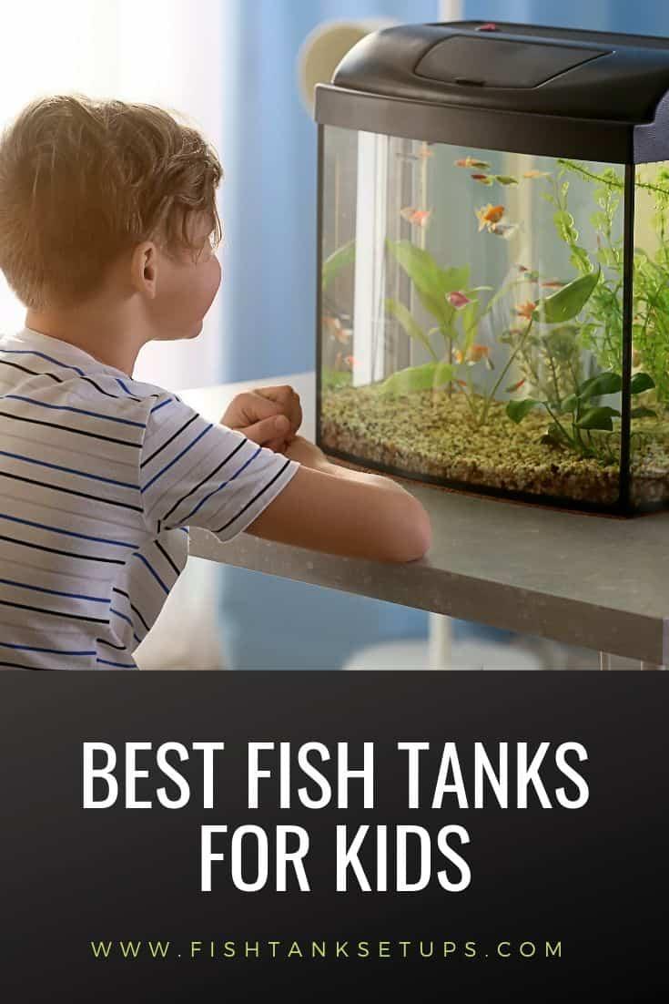 best-aquariums-for-kids