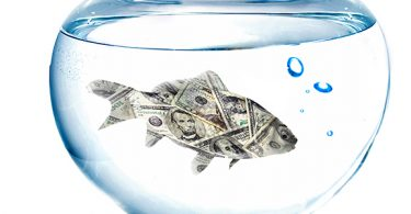 fish-tank-cost-to-maintain